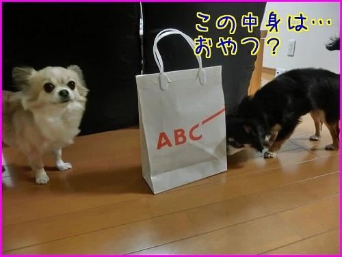 ABC贈り物 (3)