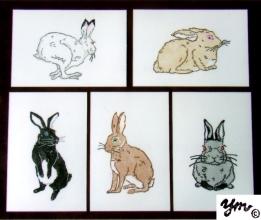 Rabbit サイン