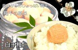 siraboshi1.jpg