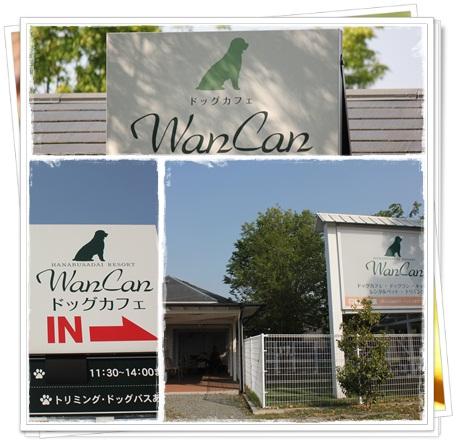 WanCan8