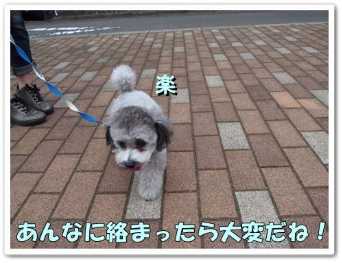 20130618_009.jpg