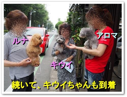 20130619_004.jpg