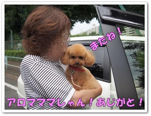 20130619_072.jpg