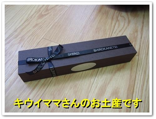 20130619_104.jpg