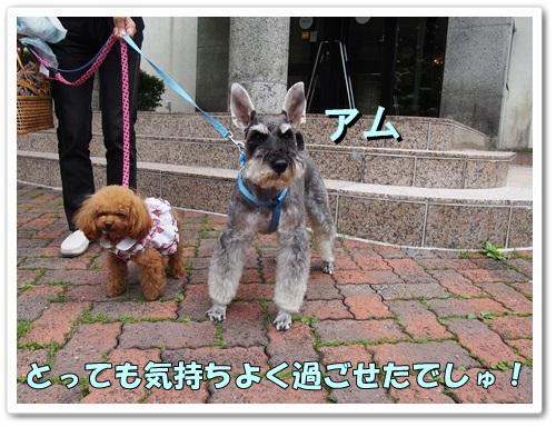 20130623_104.jpg