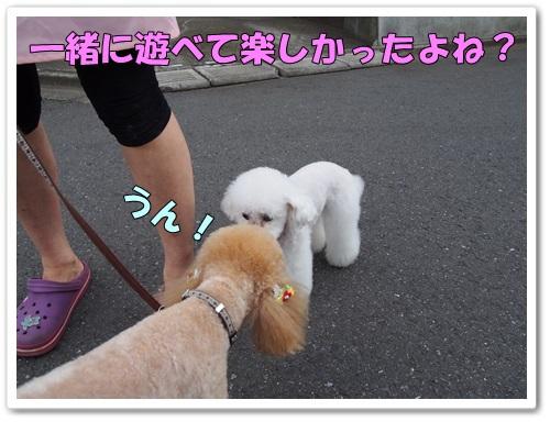 20130624_249.jpg