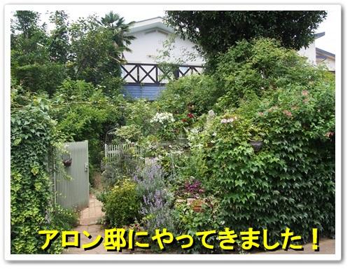 20130706_046.jpg