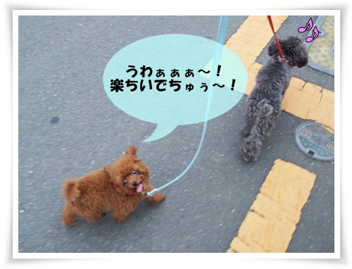 20130731_018.jpg