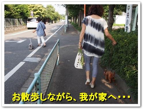 20130807_073.jpg