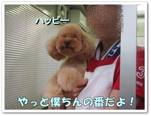 20130808_112.jpg