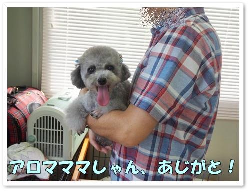 20130811_051.jpg