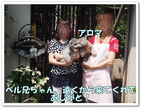20130811_065.jpg
