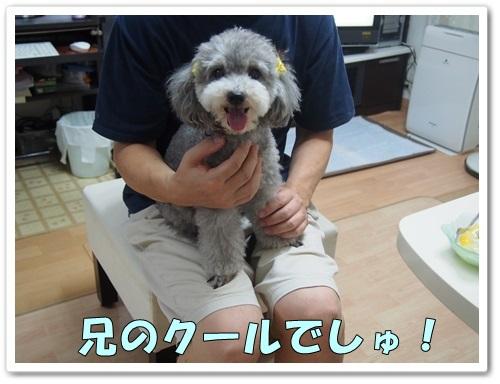 20130811_195.jpg