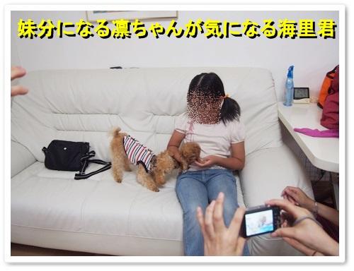 20130923_045.jpg