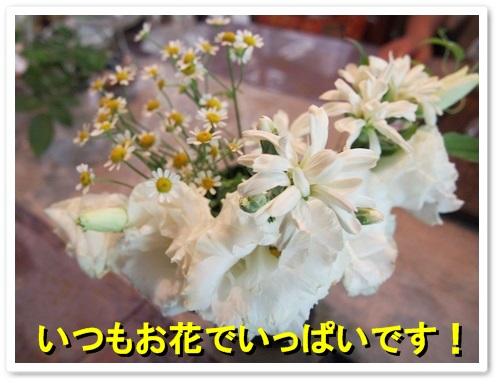 P7190120.jpg