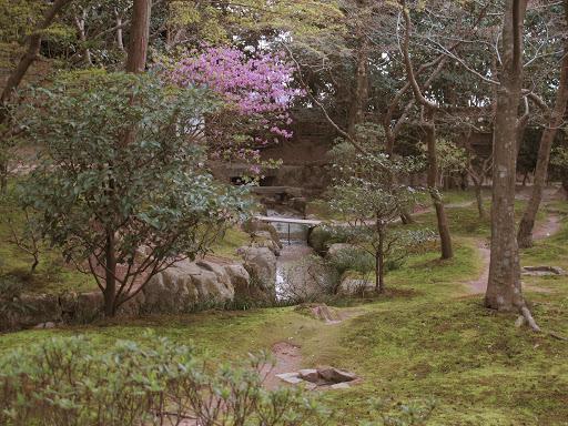 Image-京都2