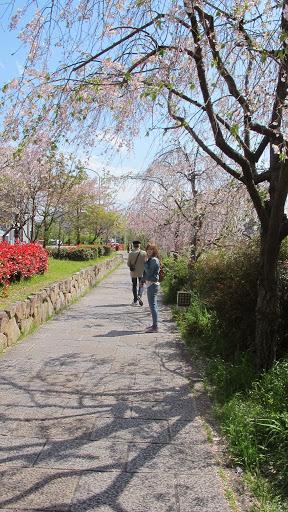 Image-京都000