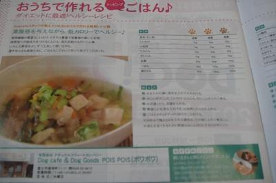 DSC08181.jpg