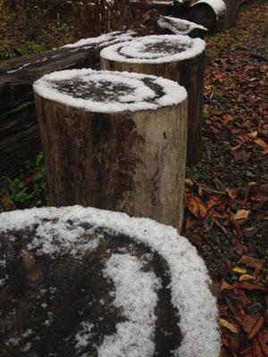 2014,11,15初雪2