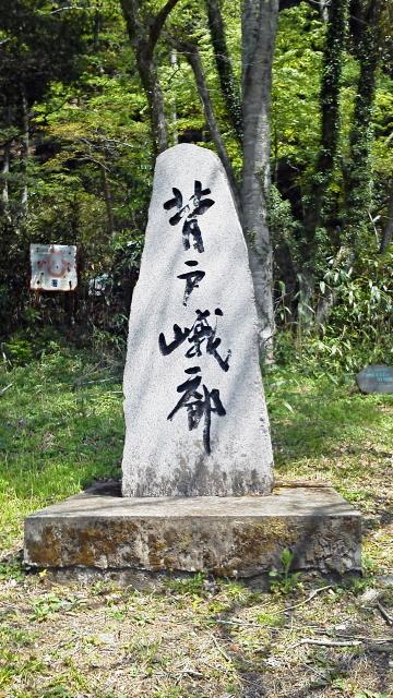 家族旅行-夏井渓谷・五浦美術館 b