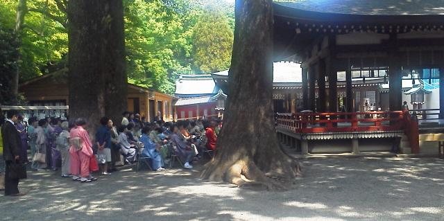 20130503氷川神社献茶式1