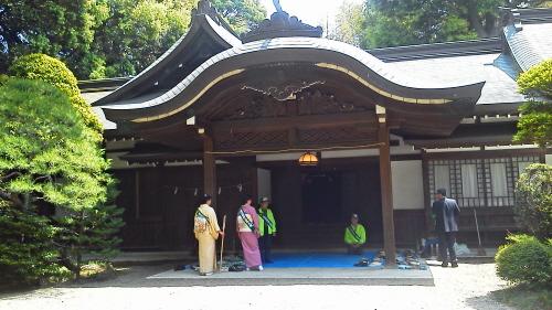 20130503氷川神社献茶式5