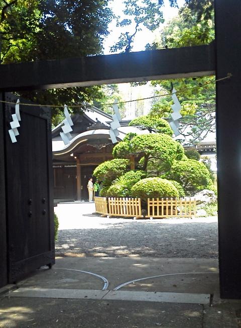 20130503氷川神社献茶式6