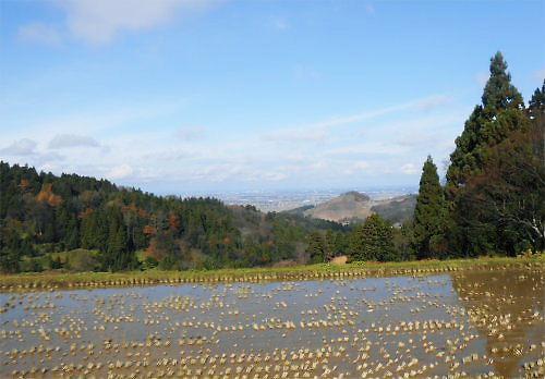 12 500 20141130 やすらぎ荘周辺03大池より日本海方向
