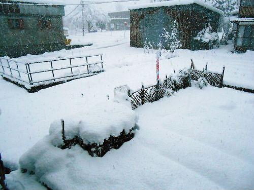02 500 20141206 雪:早朝:LL菜園~勤研センター臨む