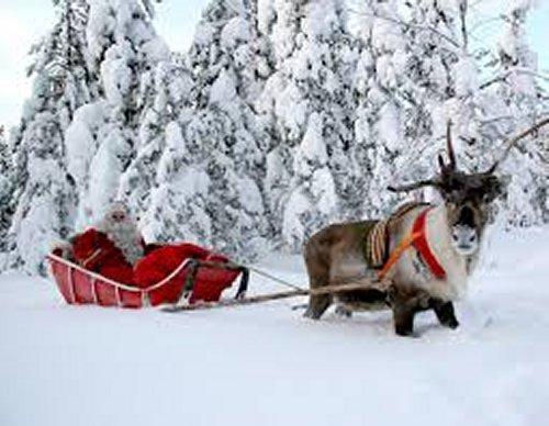 Santa One Horse Open Sleigh