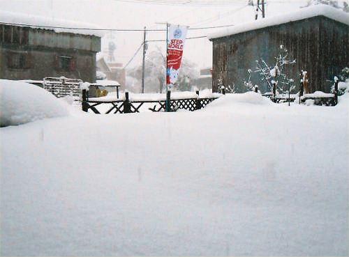 01 500 20141214 0400 pm LL-garden snow