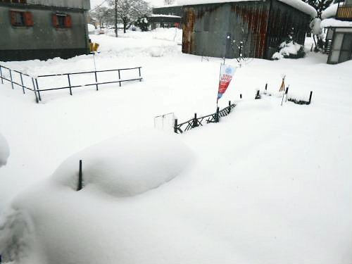 01 500 20141215 LL-garden Snow