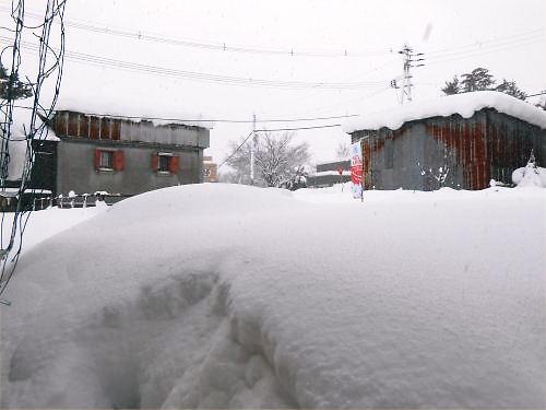 05 500 20141218 LL-garden snow