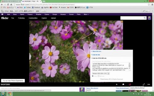IMGP2083Flickr.jpg
