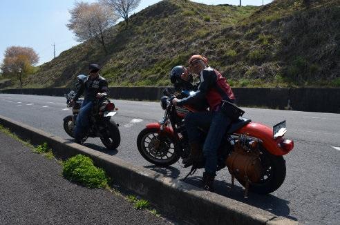 sakura-bike.jpg