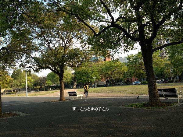 写真 2013-04-11 15 56 12
