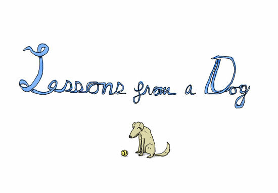 lessons-from-a-dog-1[1]