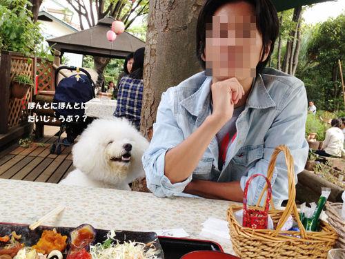 写真 2013-10-15 14 05 25 (1)