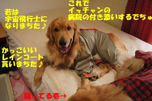 07_20130402222503.jpg