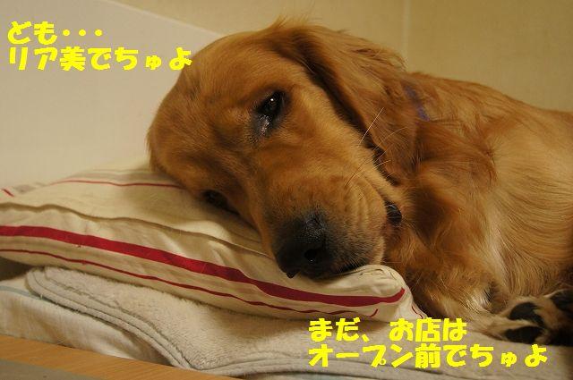 2_20130329125530.jpg