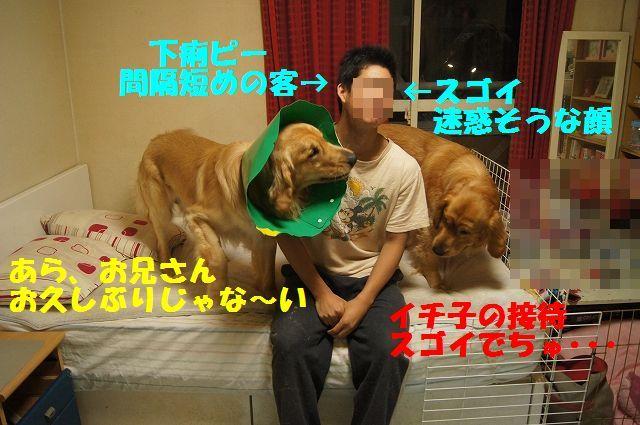 3_20130329125534.jpg