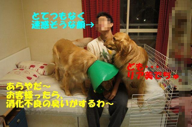 4_20130329125537.jpg