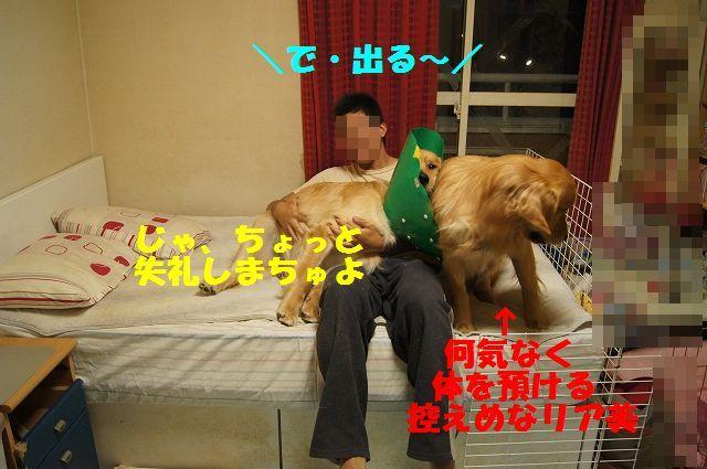 5_20130329125540.jpg