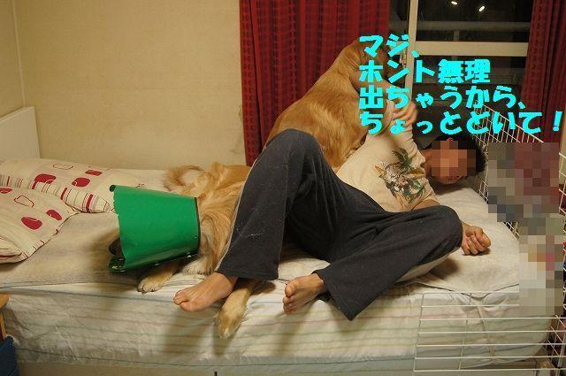 8_20130329125600.jpg