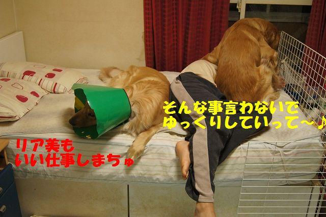 9_20130329125604.jpg