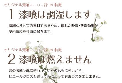 漆喰特徴_1_2