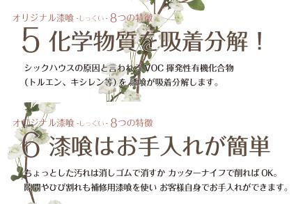 漆喰特徴_5_6