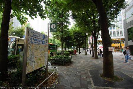 DSC02906_S.jpg