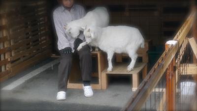 kohruhiyori140214-1