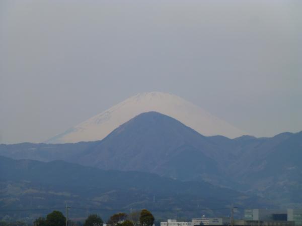 140413酒匂川0005